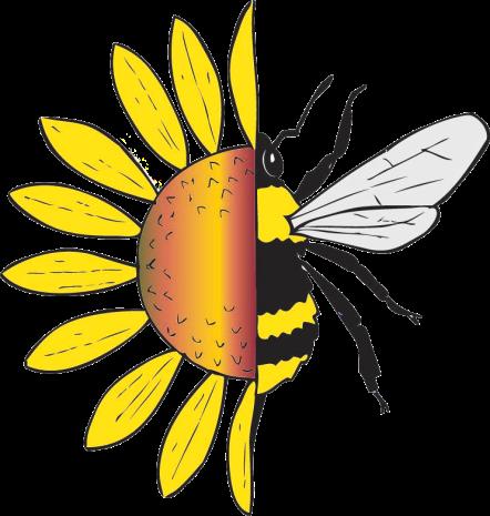 Native north american honey bees native beeology native beeology freerunsca Gallery