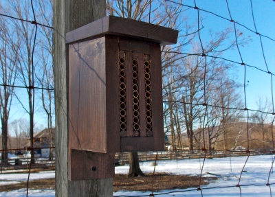 "Mason Bee House - ""The Lodge"""