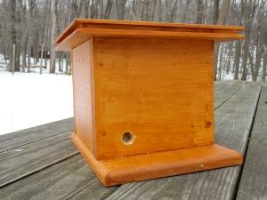 Bumblebee House