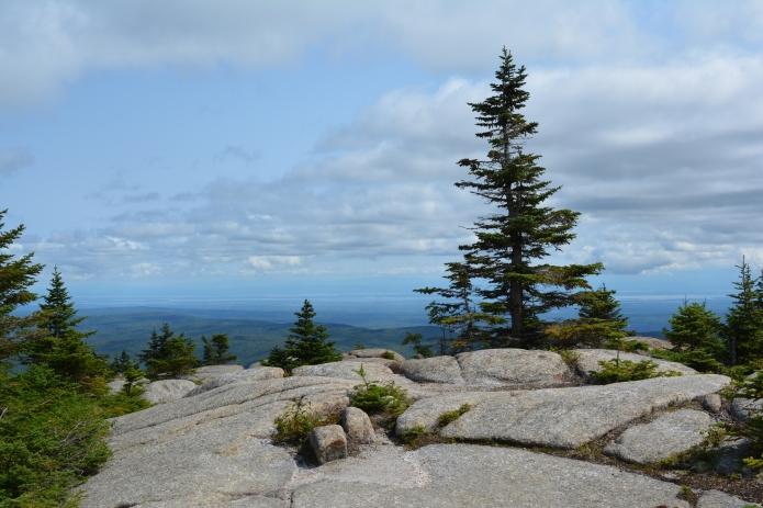 Summit of Lyon Mountain